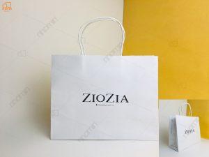 Tui-giay-ZIOZIA